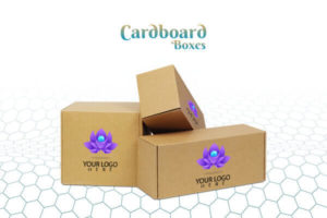 Cardboard packaging for retail products